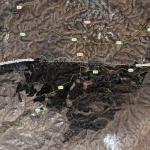 Yatirskogen en planterad oas i Negevöknen – Israel världsledande i ökenbeskogning
